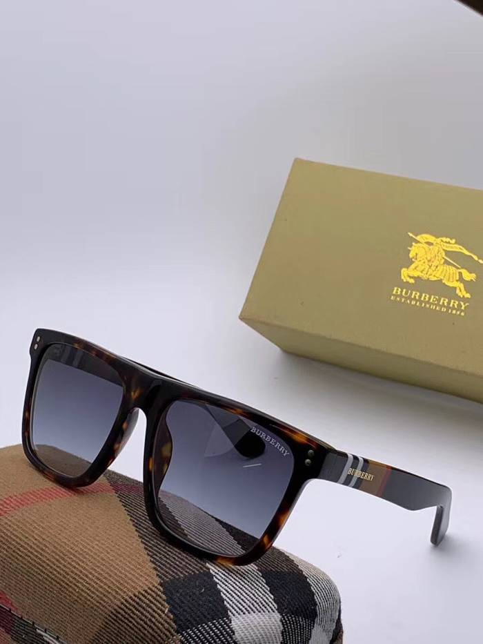 BurBerry Sunglasses Top Quality BB41006