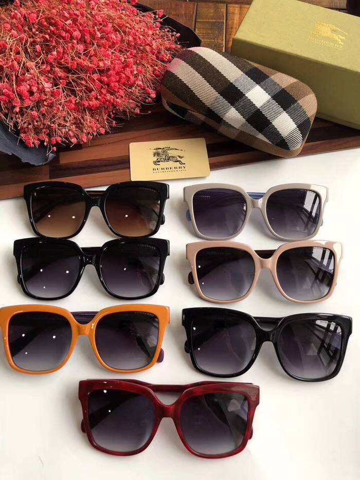 BurBerry Sunglasses Top Quality BB41017