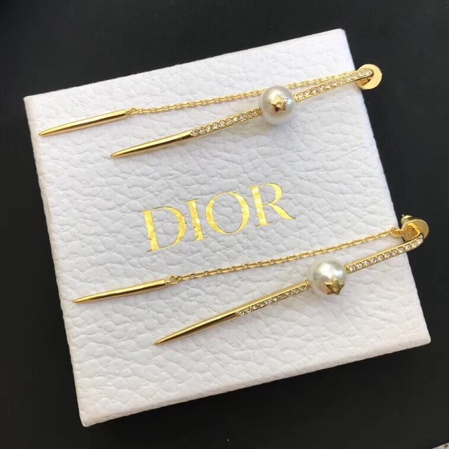 Dior Earrings CE4214